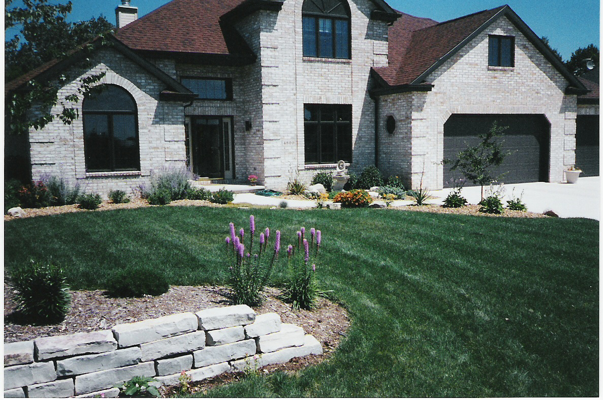 Planting Around Your House : Planting around your home desertscape uses xeriscape principles for